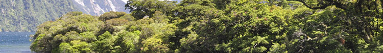 Umweltschutz bei koax24